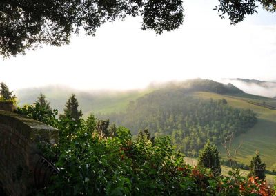 """Tuscan Morning"" - Shirin McArthur"
