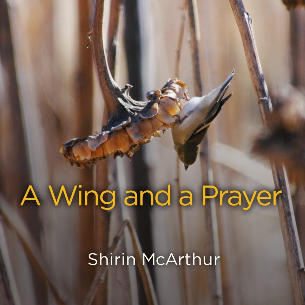 """A Wing and a Prayer"""